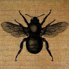 Love bees.