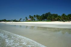 the real beauty of goa is in south goa, quiet, clean, pristine beaches - my favourite being benaulim beach
