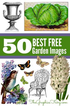 50 Favorite Gardening Images! Great for making your own Printables and Crafts!