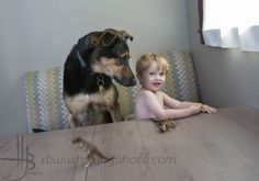 summer family and dog portraits by chicago dog photographer heidi brady of hjb dog and puppy photo
