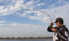 Panfishing Techniques - Informative Fisherman