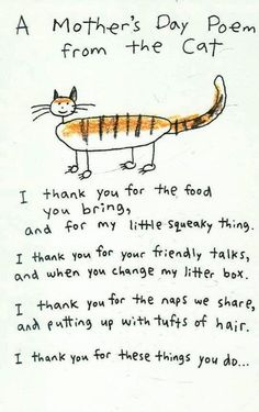 A Mother's Day poem from the cat <3