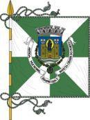 Bandeira de Porto