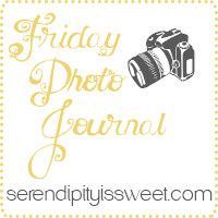 Weekly Photo Journal Recap with Linky