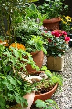 Patios and small gardens.