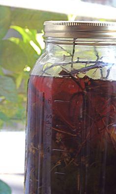 Herbal Honeys and Elixirs