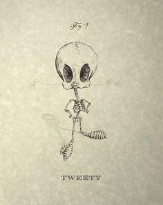 #Design – Esqueleto de desenhos animados |