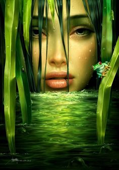 The Beauty of Green..