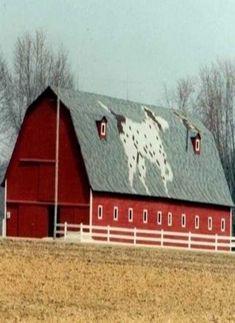 Dog Imaged On Barn Roof