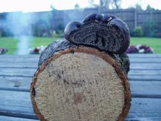 This is a photo of a random occurrence - my husband was chopping logs and he neatly sliced into this cramp ball.  I thought it made a really interesting cross-section.