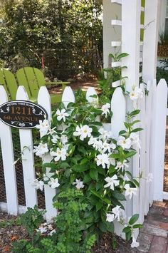 <3 picket fences