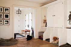 Mudroom - Photo Blog: Suzanne Dimma, Living With Pets