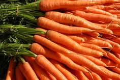 Radiant carrot seed will help heal the pains and discomforts of Hay Fever