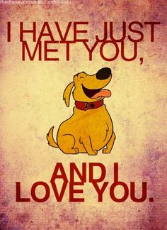 Disney Up.. I wonder if this is how my dog thought about me when we first met, lol ♥