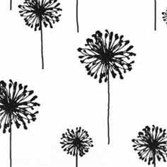 $7;Dandelion White Black by Premier Prints - Drapery Fabric; this could be a fun print for the laundry French door curtains and window curtain