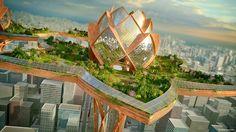 Lotus City 7