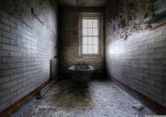 . asylum