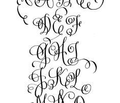 Calligraphy Flourishes On Pinterest 35 Pins