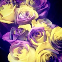 Purple&'gold' roses!! Requesting these for graduation in May;)