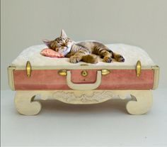 Vintage Suitcase Pet Bed 40s Suitcase - Salmon Pink with Hand-made Wooden Style Base - Original design