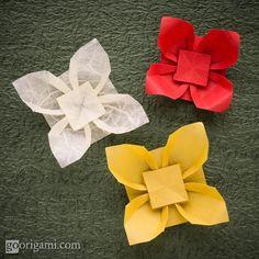 """""""Papoulas da Praia"""" (pg 66), do livro """"Origami em Flor"""", de Flaviane Koti e Vera Young, dobradas por Maria Sinayscaya.  ONDE COMPRAR O LIVRO: http://www.coisasdepapel.com.br/2013/08/livro-origami-em-flor-via-amazon-para-o-mundo/  http://www.coisasdepapel.com.br/2013/07/onde-comprar-o-livro-origami-em-flor/"""