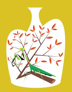 Animals & Foliage - Sara Saedi + Illustration