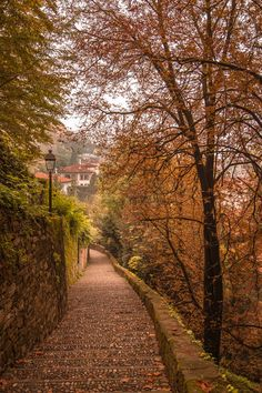 stone paths, autumn, fall, bergamo, beauti, stones, place, italy, itali