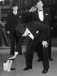Winston Churchill loved cats.