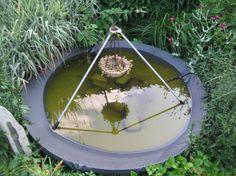 old satellite dish turned pond/bird bath