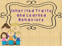 This 25 slide lesson teaches students about:   ~Inherited traits in humans, animals, and plants ~Inherited behaviors ~Learned behaviors ~Genes ~Heredity