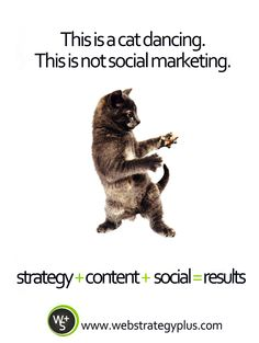 This is an awesome ad. This is not not an awesome ad. #marketing #advertising #cats