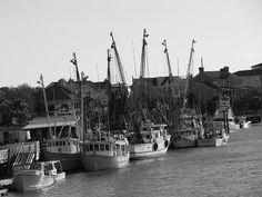 love shrimp boat pics