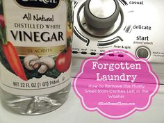 Forgotten Laundry (How to Remove the Stink from Clothes Left in the Washer)