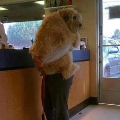 Doesn't matter how big you are, you're never too big for a hug :)