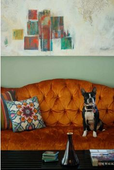 velvet couch interior, dream living rooms, burnt orange, colorful rooms, art, vibrant colors, terrier, dog, couches