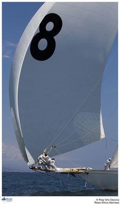 sailing //
