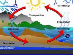 Water Cycle Video/Song - LOVE LOVE LOVE!!