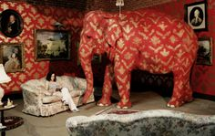 When in doubt, ignore the big pink elephant in the room