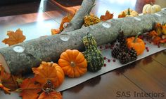 Such a nifty autumn centerpiece to spruce up your dining table or mantel, plus it's easy and affordable to make!