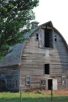Olde Barn Love