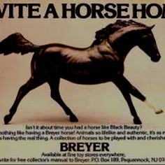 I started collecting Breyer horses in 1982 (age 8) and Black Beauty was my first. I ended up with over 100 Breyer horses in my collection. A lot of the models I have are discontinued now and worth a lot of money but I can't see ever getting rid of them, they mean too much to me.