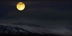 moon-light-6
