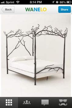 Beautiful. I can see this is a girls room- enchanted forest theme