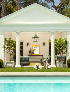 Fab poolhouse...dogs and all!