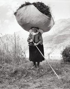 1959, vintage photographs, hay, white, pepi merisio, cogn, big bags, italy, photographi