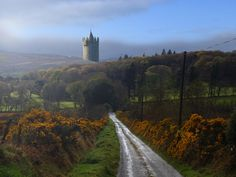 Ireland Romance: Castles and Abbey with Dromoland