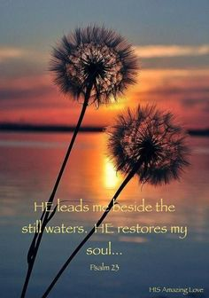Psalm 23:2 ~ He leads me beside the still waters, He restores my soul...