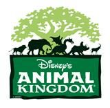Animal Kingdom which is my second favorite Disney park next to Disneyland.
