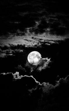 Night. S)