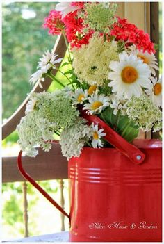 <3 I think a casual arrangement in a watering can is one of the prettiest there is!